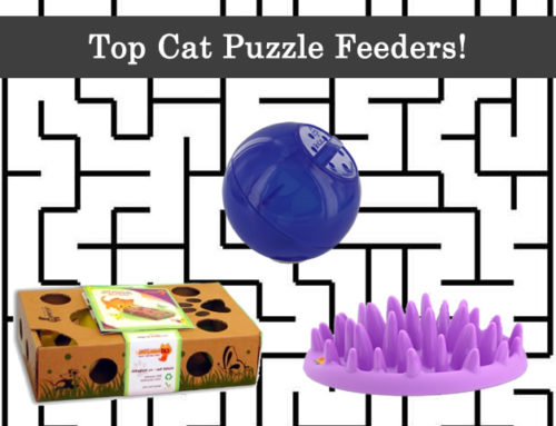 Top Cat Puzzle Feeders