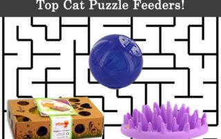 top cat puzzle feeders